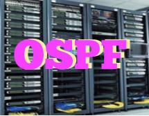 Curso Online OSPF - Config e Tshoot