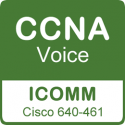 Curso Cisco CCNA Voice