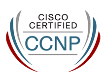 Curso Online CCNP Switch (300-115)