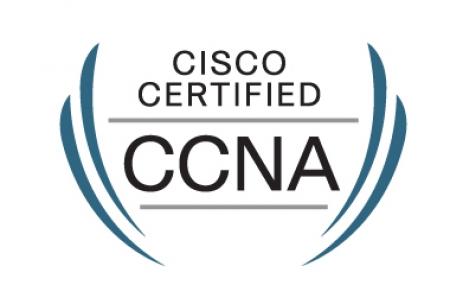 Curso Online Conectividade IP